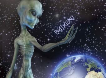 315206-alien