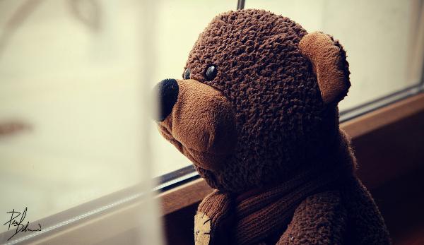 alone_teddy_by_hombre_cz
