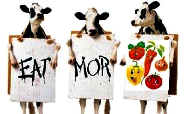 """3 iemesli, kādēļ teikt gaļas un piena produktiem """"Nē!""""."""