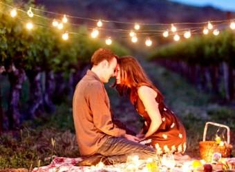 romantic-picnic-lighting