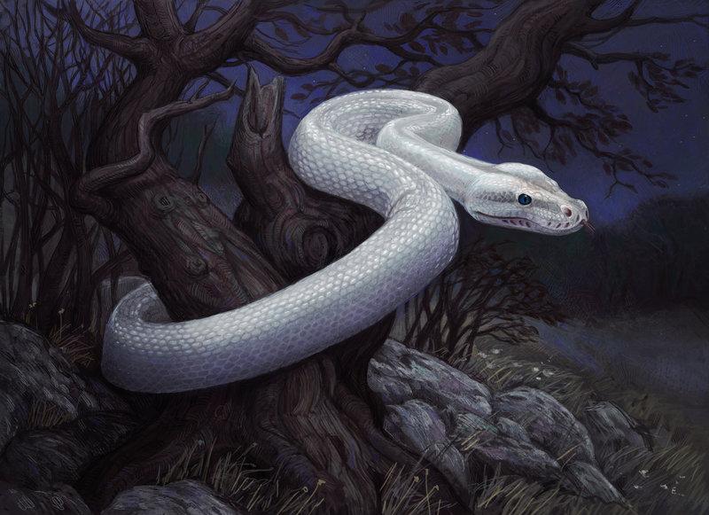 3 Zodiaka zīmju sievietes, kuras ir īstas čūskas