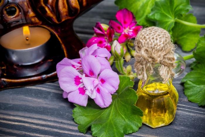 Veselības puķe ģerānija – receptes un citi izmantošanas veidi