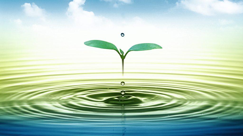 Ūdenim patiešām piemīt atmiņa. Tas ir pierādīts!