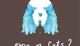 Suns vai kaķis? Tests, kas atklās to, kāds tu esi mīlestībā